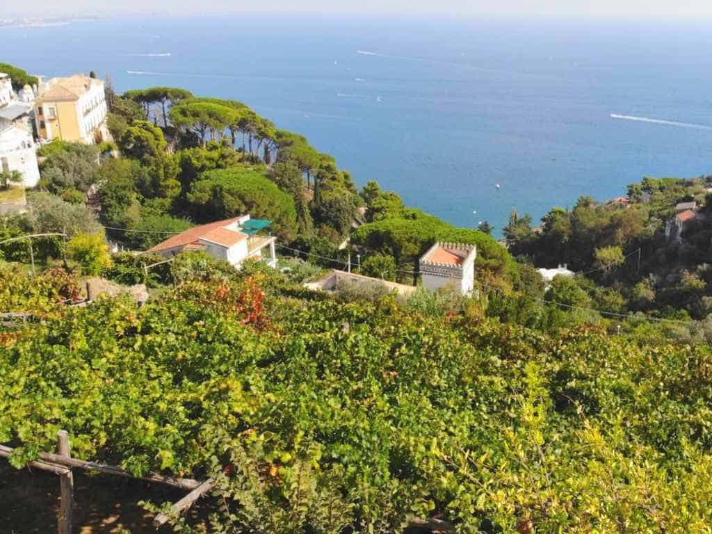 traumafter blick von der terrasse des weinguts le vigne di raito auf die amalfi kueste