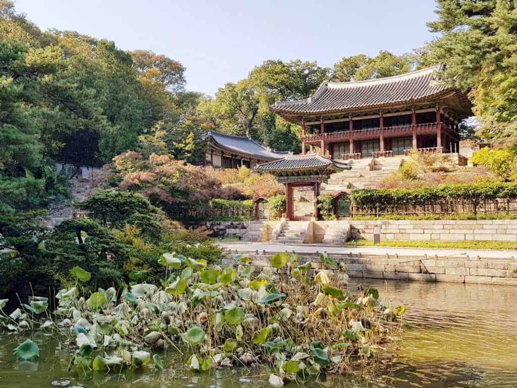 blick auf ein gebaeude im geheimen garten in seoul