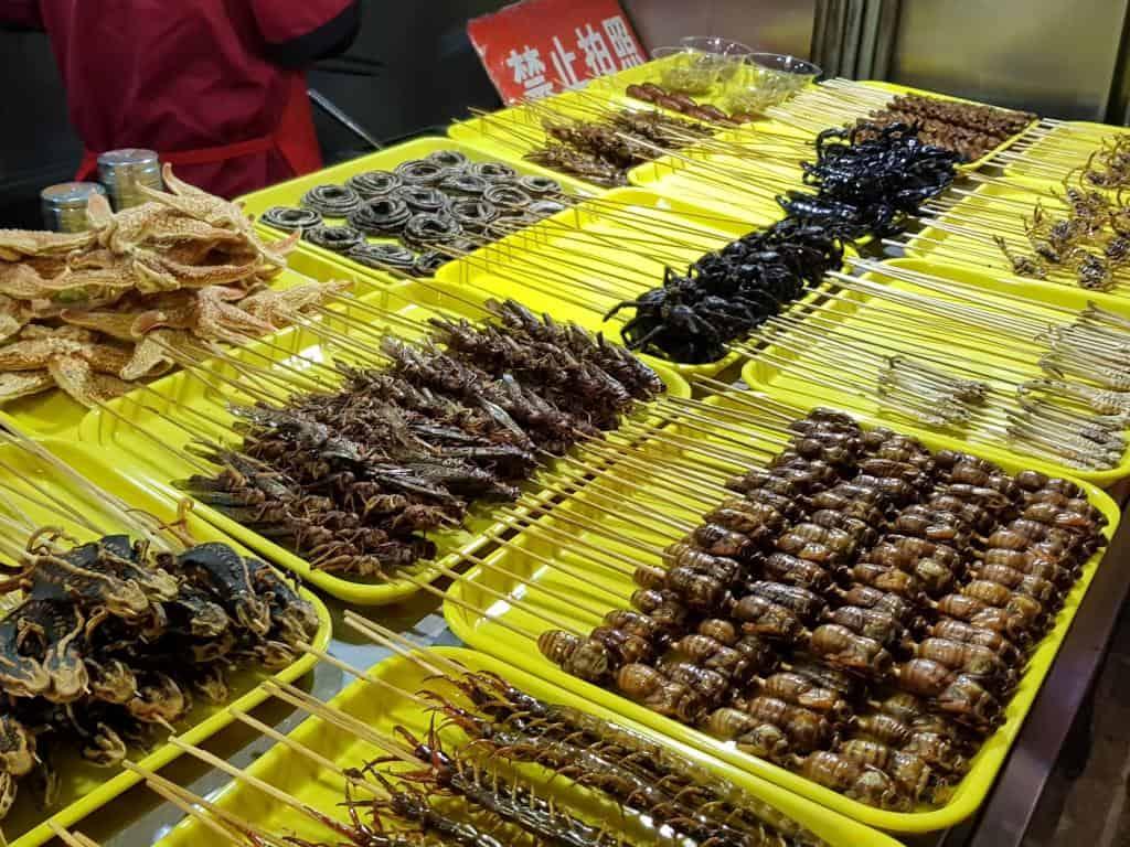 wangfujin streetfood skorpione vogelspinne am spieß peking china