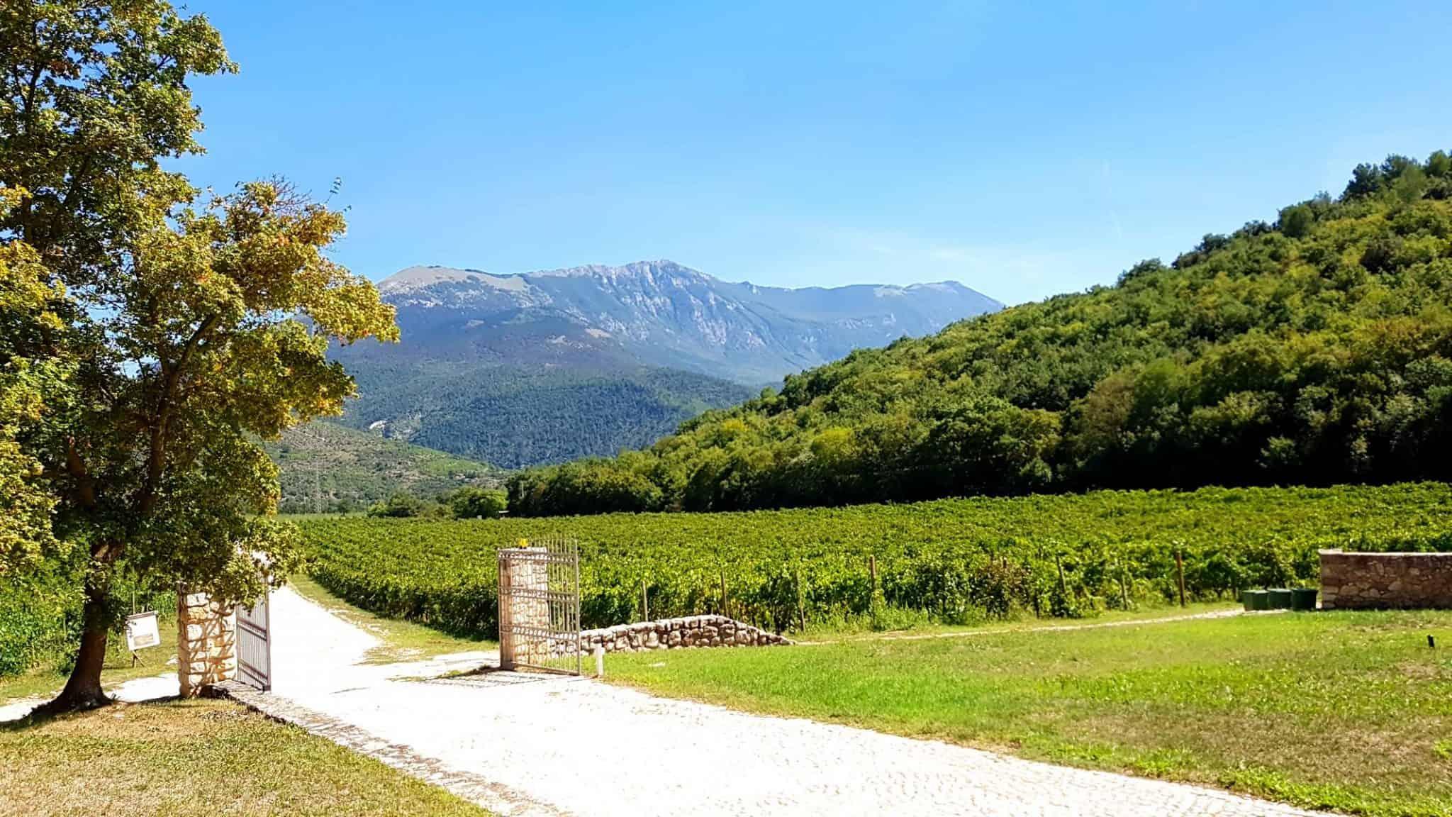 weinblog-weltreise-landschaft-italien-berge