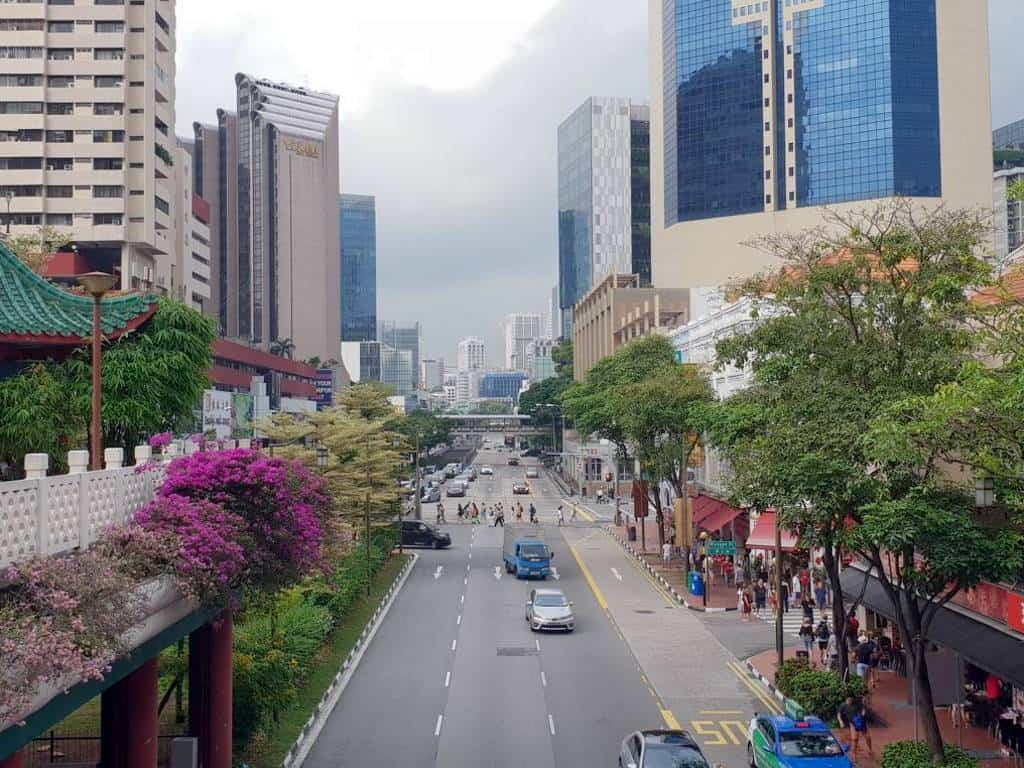 in singapur ist die strasse das haeuser die baeume perfekt und sauber