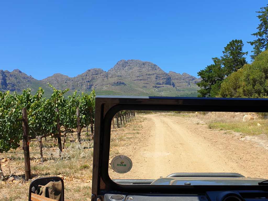 im jeep durch die weinberge südafrikase