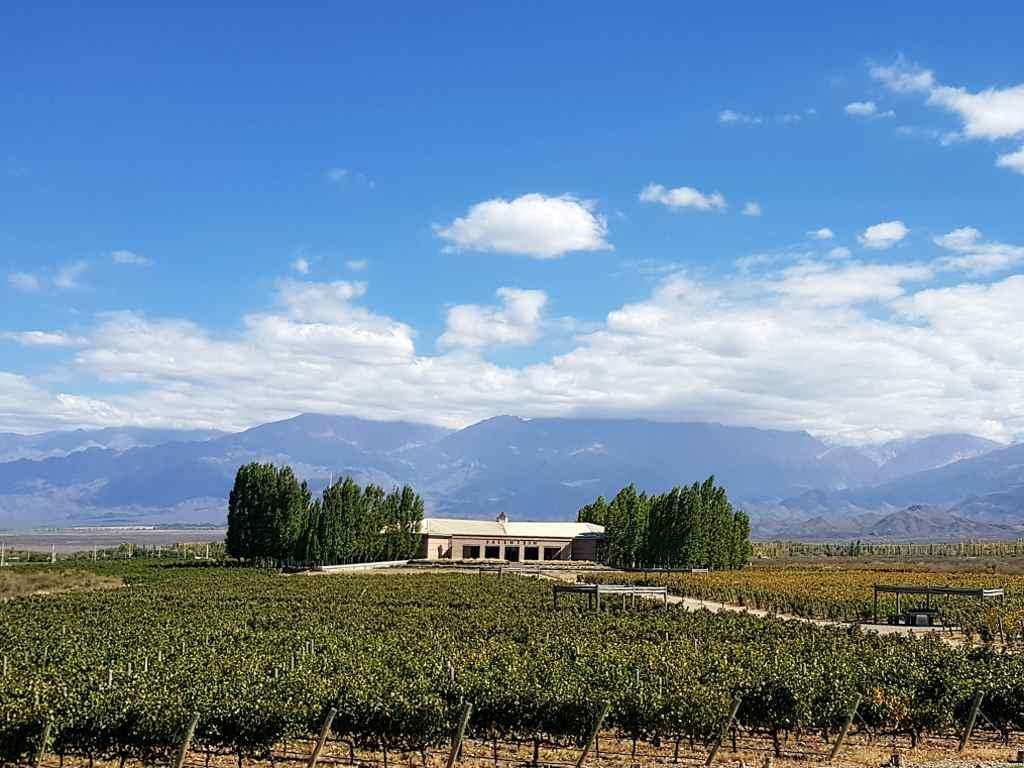landschaft weinregion valle de uco weingut salentein