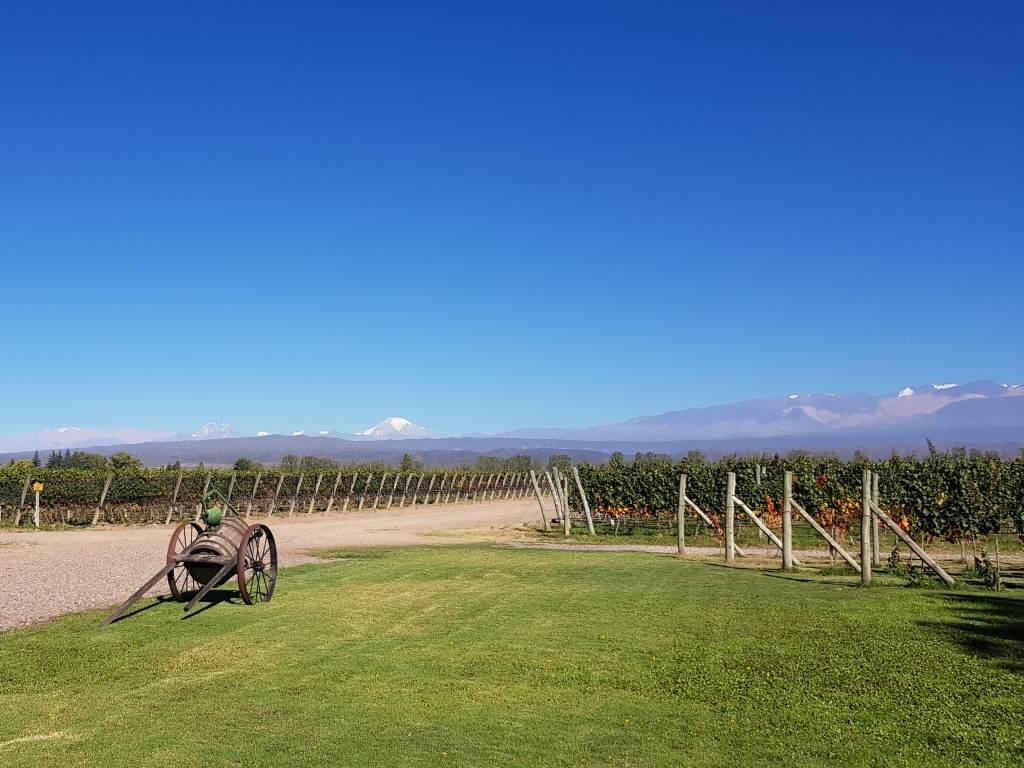 zentrale weinregion argentiniens valle de uco mendoza