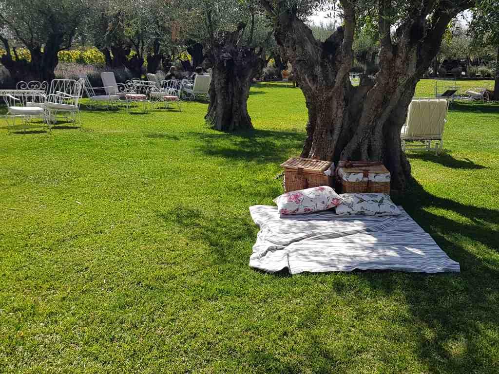 weingut alta vista garten picknickbereich
