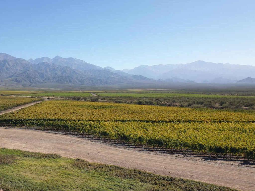 lanschaft uco valley mendoza argentinien