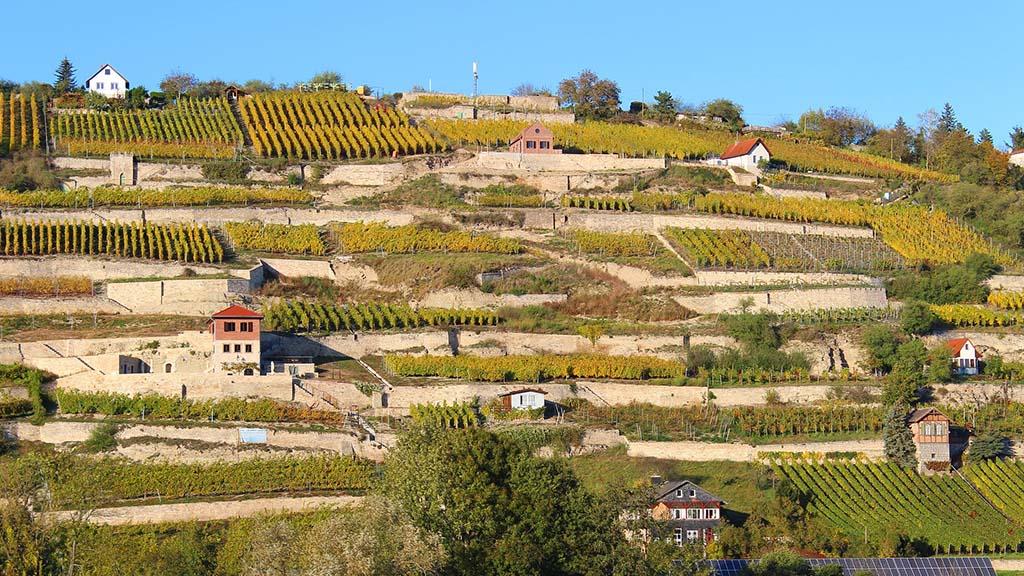 Weinanbaugebiet Deutschland Karte Saale Unstrut Weinberg